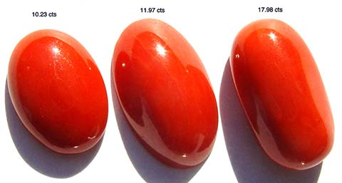 Photo of astrological ayurvedic red coral