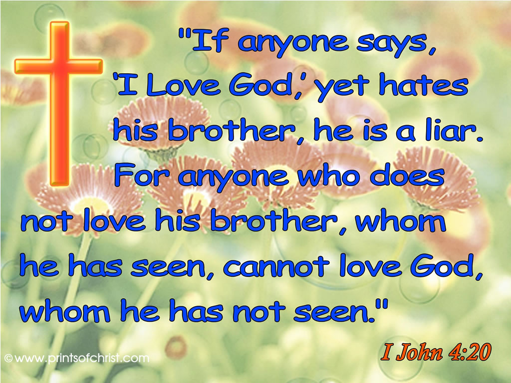 Love your brother Image