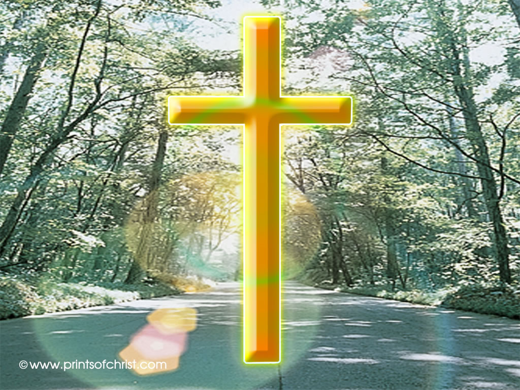 cross in trees