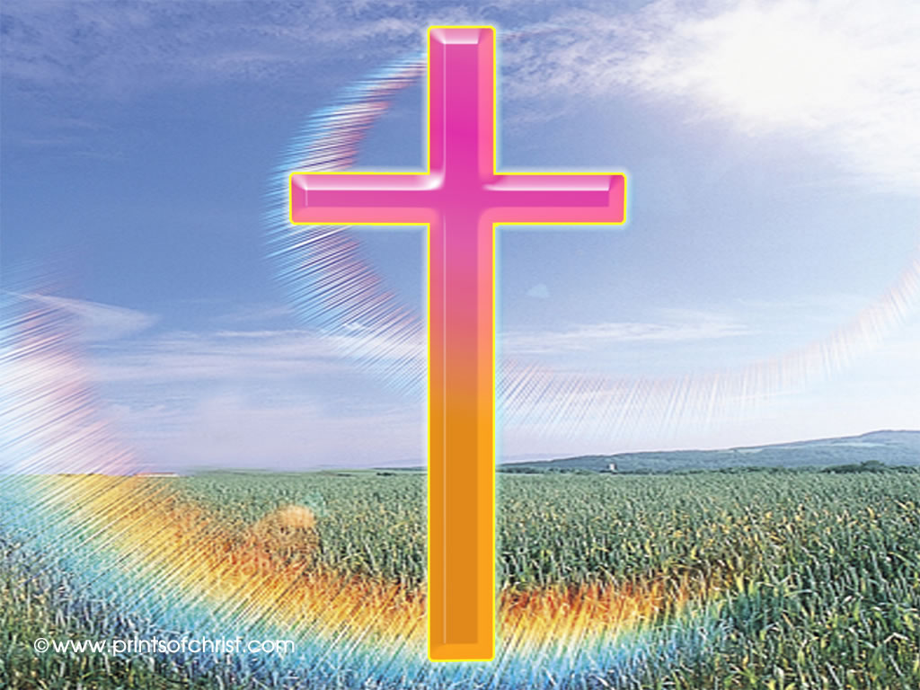 cross in field picture