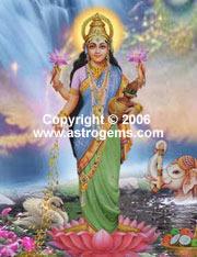 Canvas print of Lakshmi