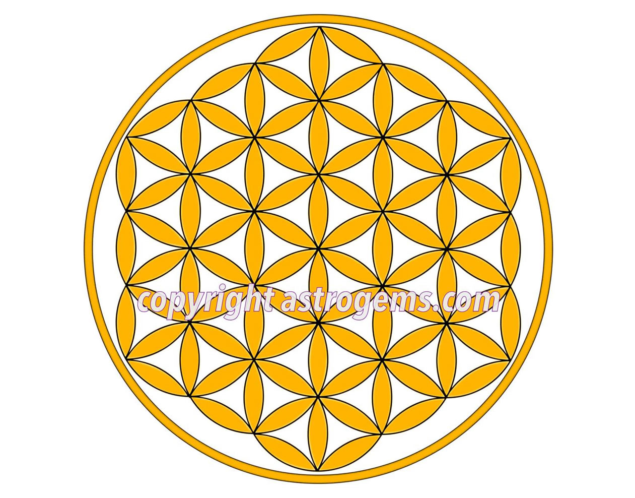 Flower of Life Yantra 6