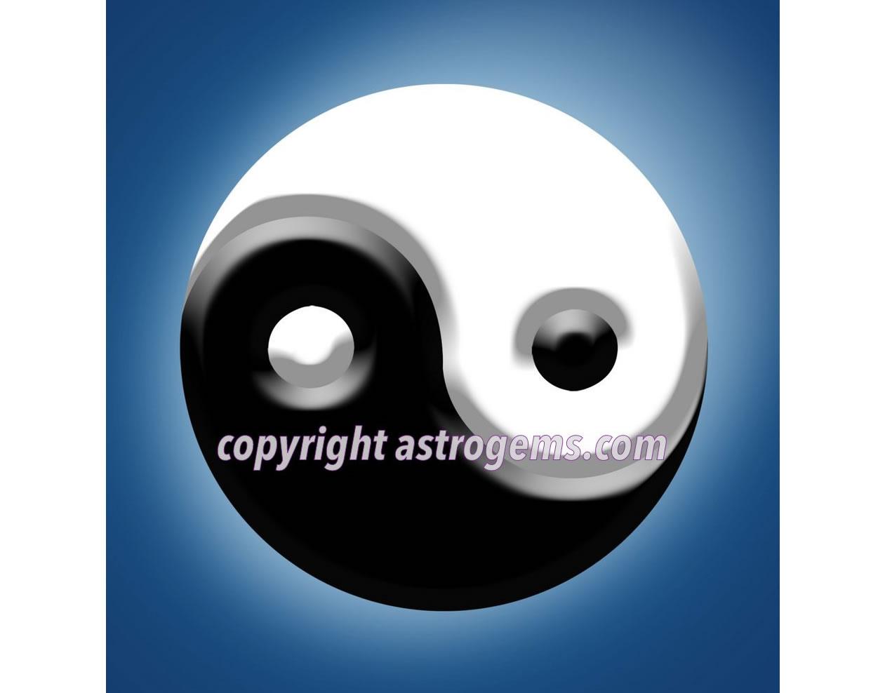 Yin Yang Yantra